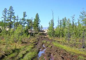 Фундамент на болотистой почве А